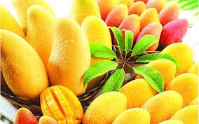 '10 Benefits of Mango in Hindi' (आम के 10 फायदे हिंदी में)