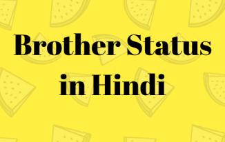"""""""भाई स्टेटस हिंदी में"""" (Brother Status in Hindi)"""