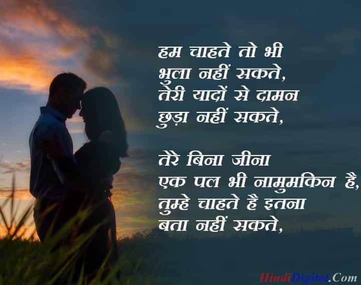 Ham chahte to bhi bhula nahi sakte